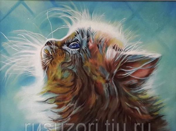 """Набор для создания картины со стразами Цветной """"Котенок в мечтах"""", 40 х 50 см"""