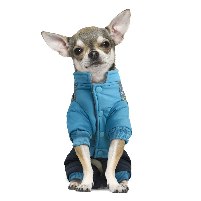 "Комбинезон для собак Triol ""Mickey-2"", зимний, для мальчика, цвет: голубой, серый. Размер XS"