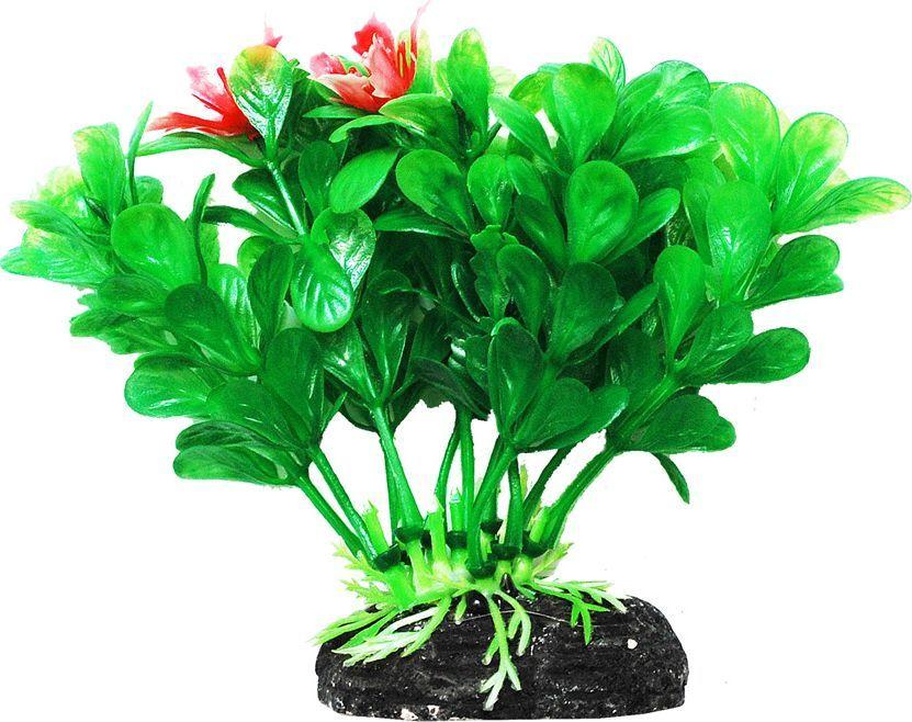 Растение для аквариума Уют Людвигия зеленая, высота 11 см растение для аквариума уют щитолистник зеленый высота 11 см