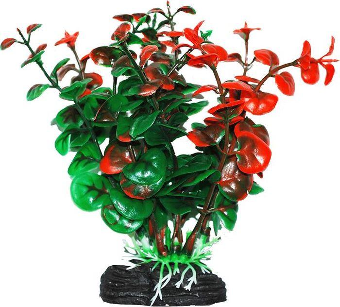 Растение для аквариума Уют Бакопа зелено-оранжевая, высота 11 см растение для аквариума уют щитолистник зеленый высота 11 см