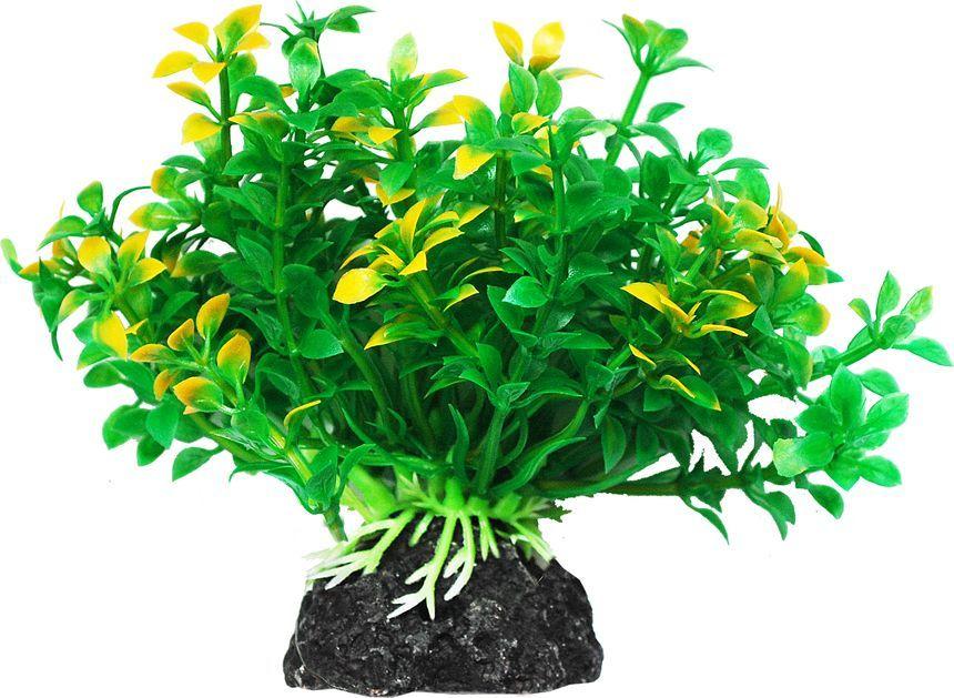 Растение для аквариума Уют Микрантемум зелено-желтый, высота 11 см растение для аквариума уют щитолистник зеленый высота 11 см