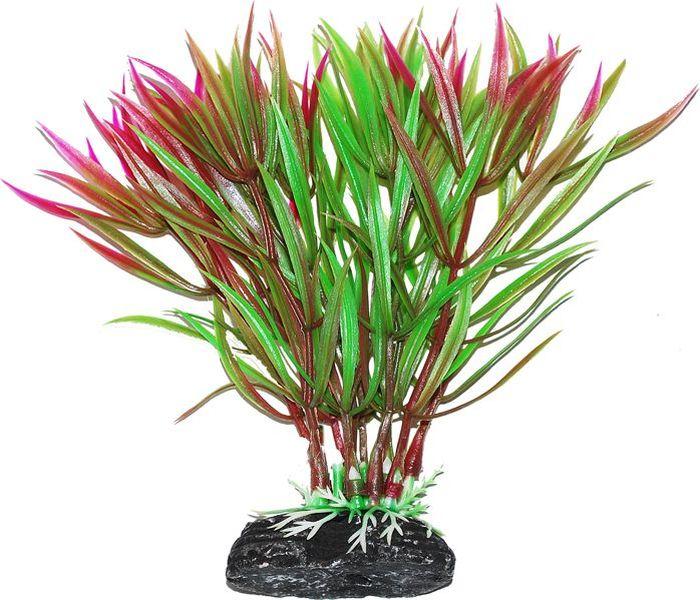 Растение для аквариума Уют Гетерантера зелено-фиолетовая, высота 11 см растение для аквариума уют щитолистник зеленый высота 11 см