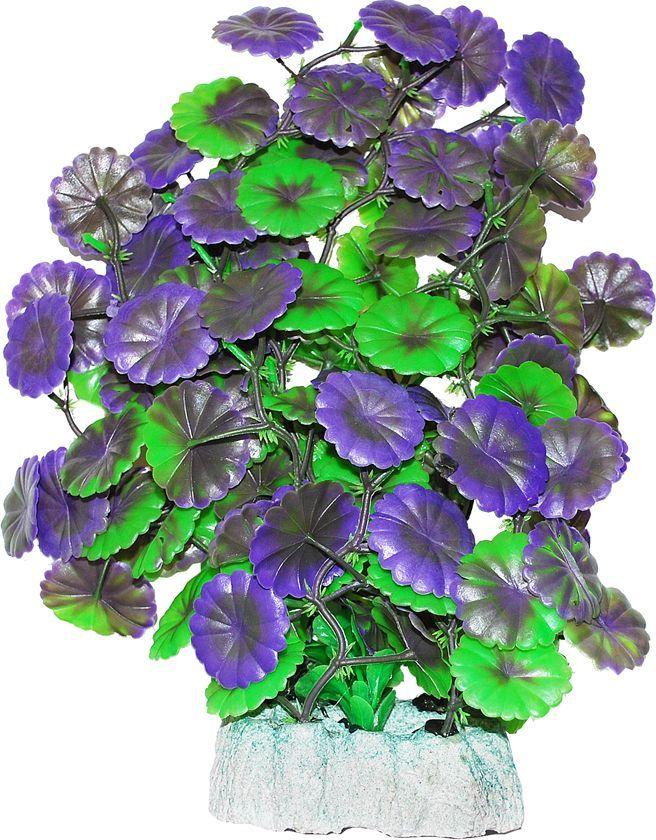 Растение для аквариума Уют Щитолистник зелено-фиолетовый, высота 24 см растение для аквариума уют щитолистник зеленый высота 11 см