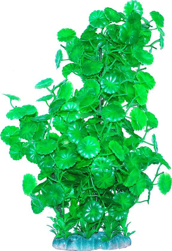 Растение для аквариума Уют Щитолистник зеленый, высота 44 см растение для аквариума уют щитолистник зеленый высота 11 см