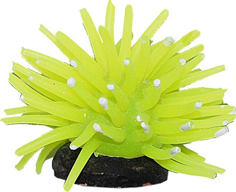 Коралл для аквариума Уют Разноцветные щупальца, силиконовый, цвет в ассортименте, 5 х 5 х 4 см декоративный элемент коралл 18 5 х 11 х 14 см