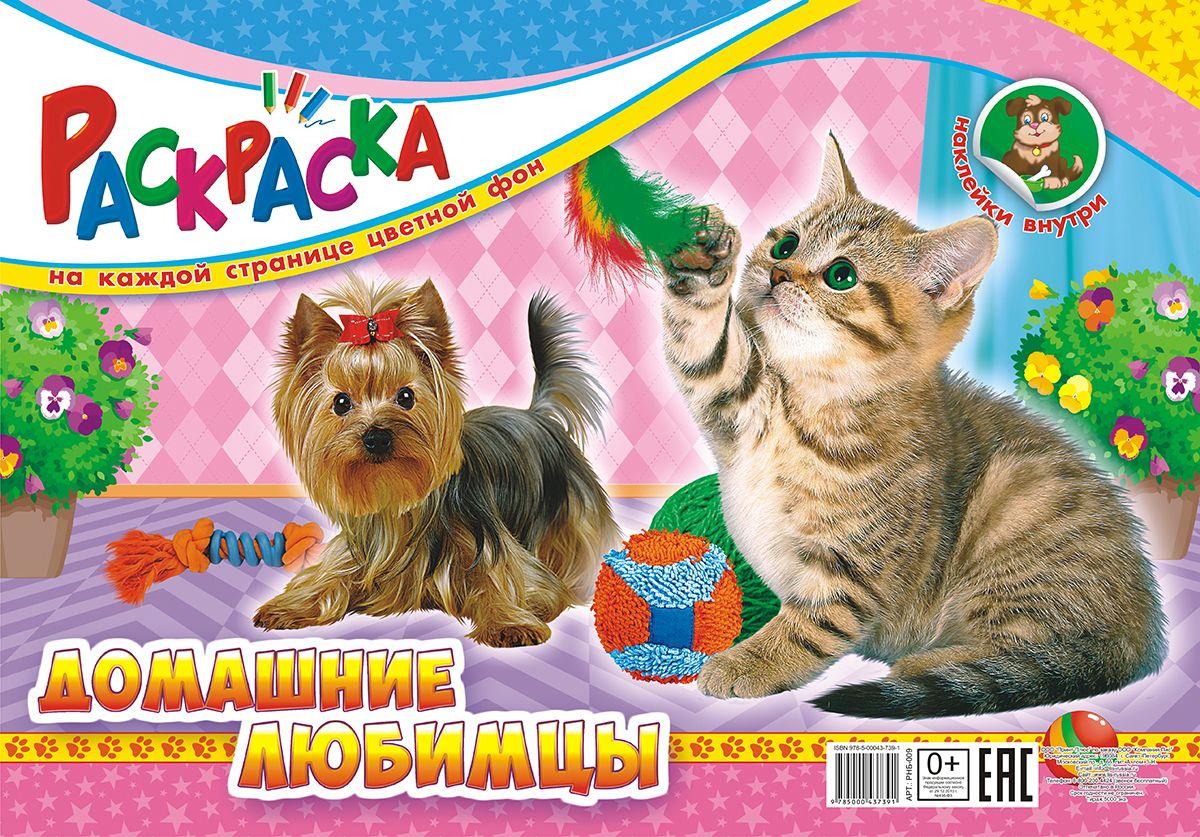 Раскраска ЛиС Гигантская с наклейками, Домашние любимцы РНБ-009, формат А3