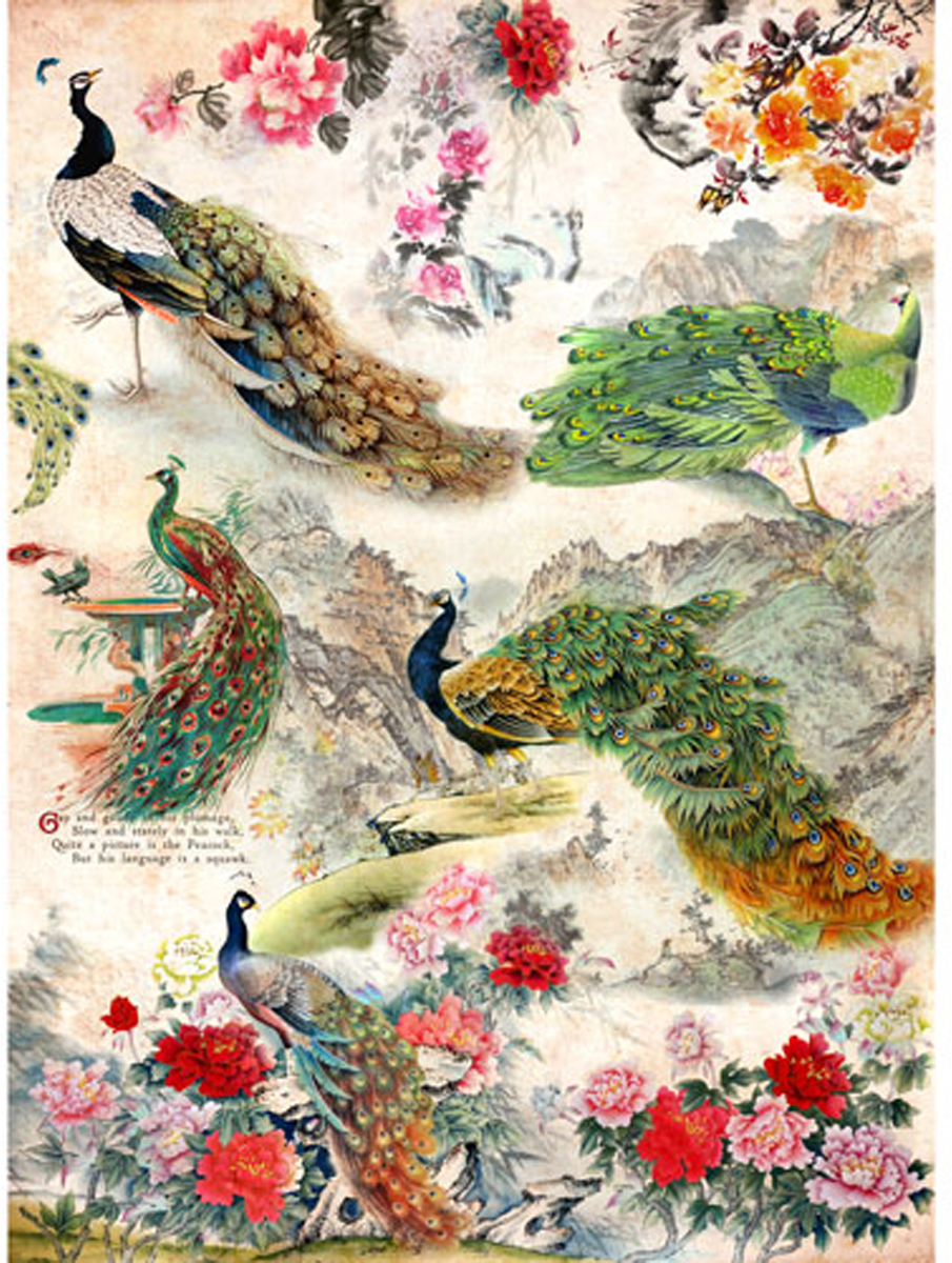 Рисовая бумага для декупажа Craft Premier Павлины, цветы, 28,2 х 38,4 см рисовая бумага для декупажа craft premier шебби розы a3
