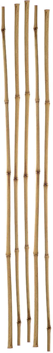 Опора для растений Green Apple, бамбуковая, диаметр 1 см, длина 75 см, 5 шт опора для растений green apple бамбуковая диаметр 1 см длина 75 см 5 шт