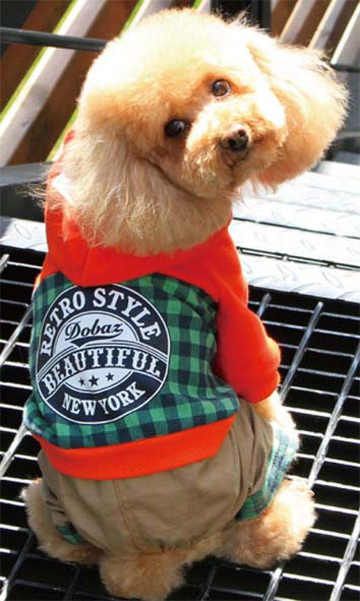 Комбинезон для собак Dobaz, цвет: зеленый, черный. ДА13049АХЛ. Размер XL комбинезон для собак dobaz утепленный цвет бежевый дл1008бхл размер xl