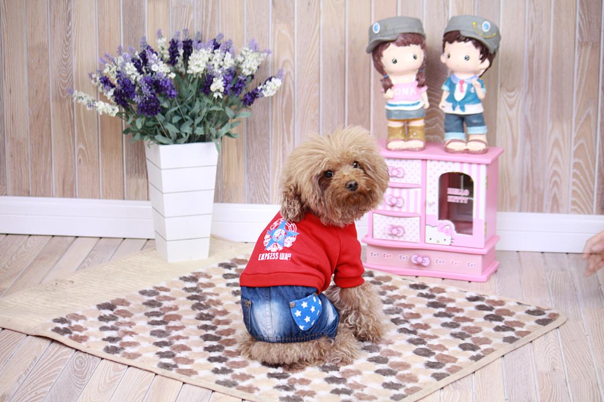 """Комбинезон для собак Dobaz """"Звезда"""", цвет: джинсовый, красный. ДЛ1212А2ХЛ. Размер 2XL"""