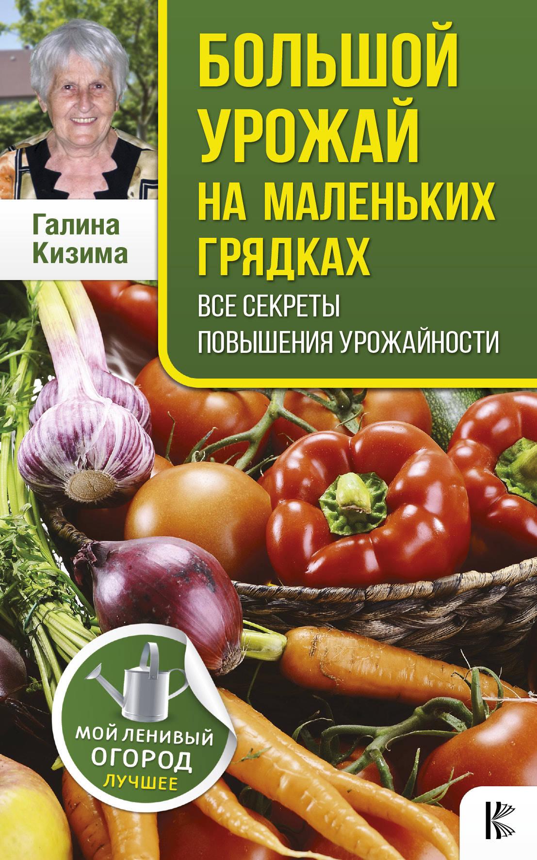 Галина Кизима Большой урожай на маленьких грядках. Все секреты повышения урожайности