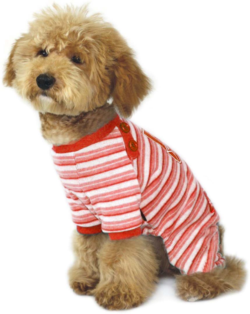 """Комбинезон для собак """"Dobaz"""", цвет: розовый, голубой. ДА1016АХЛ. Размер XL"""