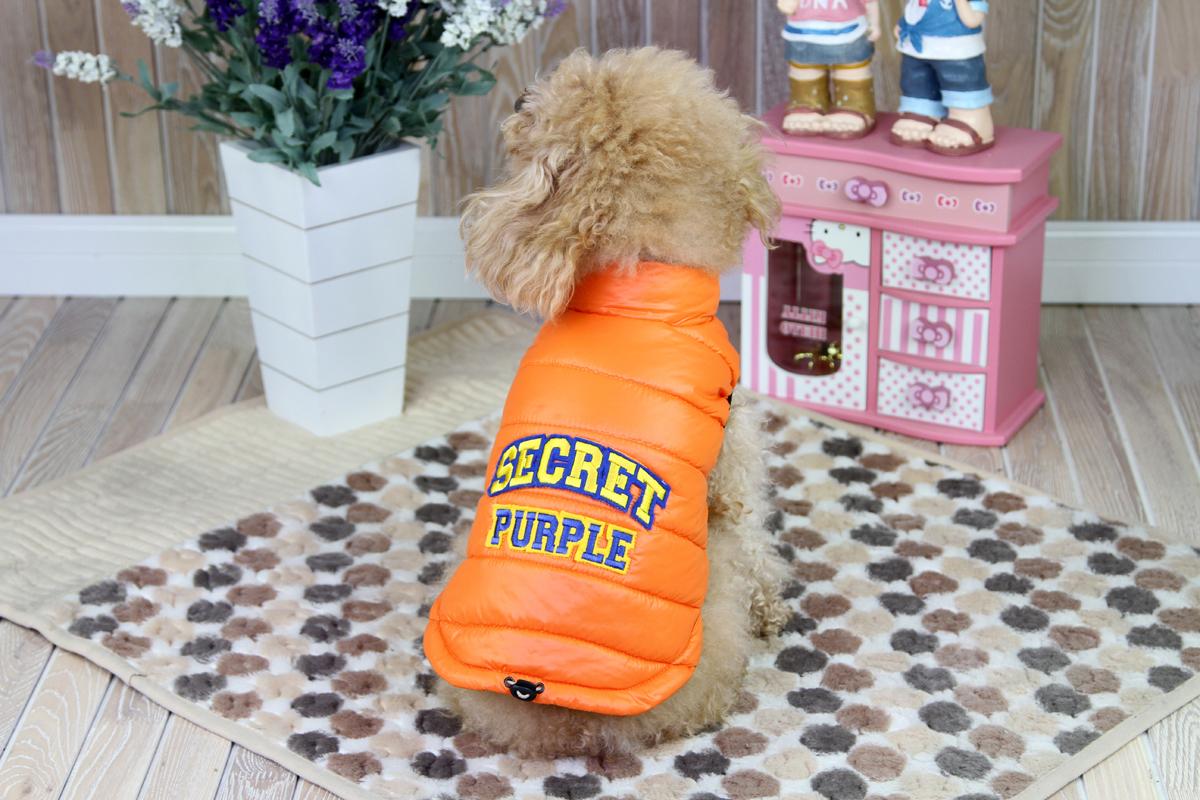Куртка для собак Dobaz, цвет: оранжевый. ДА1207ВХС. Размер XS куртка для мальчика huppa janek цвет синий 18170004 93335 размер xs 158 164