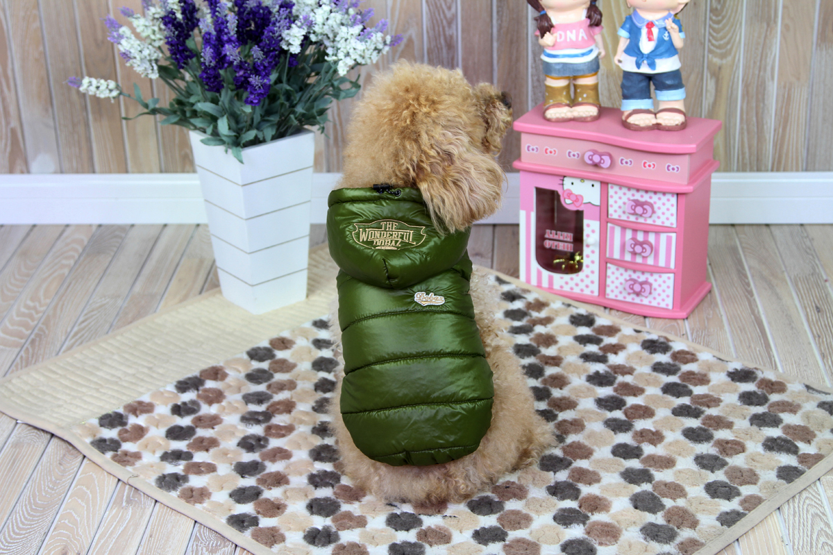 "Куртка для собак ""Dobaz"", цвет: зеленый. ДА1211АХС. Размер XS"