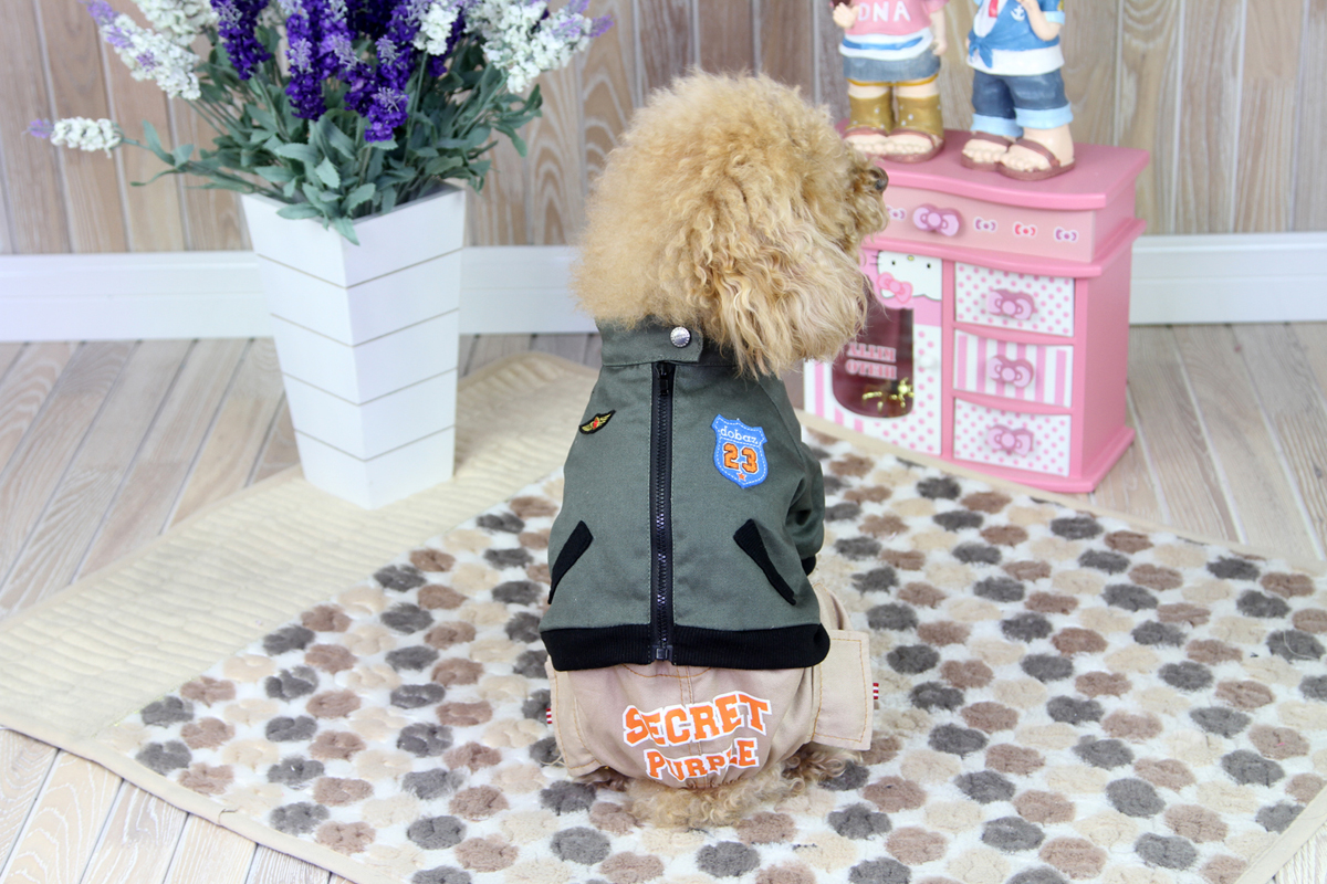 Комбинезон для собак Dobaz, цвет: хаки, бежевый. ДА1218ВХЛ. Размер XL комбинезон для собак dobaz утепленный цвет бежевый дл1008бхл размер xl