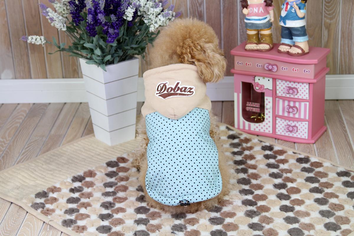 """Куртка для собак """"Dobaz"""", цвет: голубой, черный. ДА1222СХЛ. Размер XL"""
