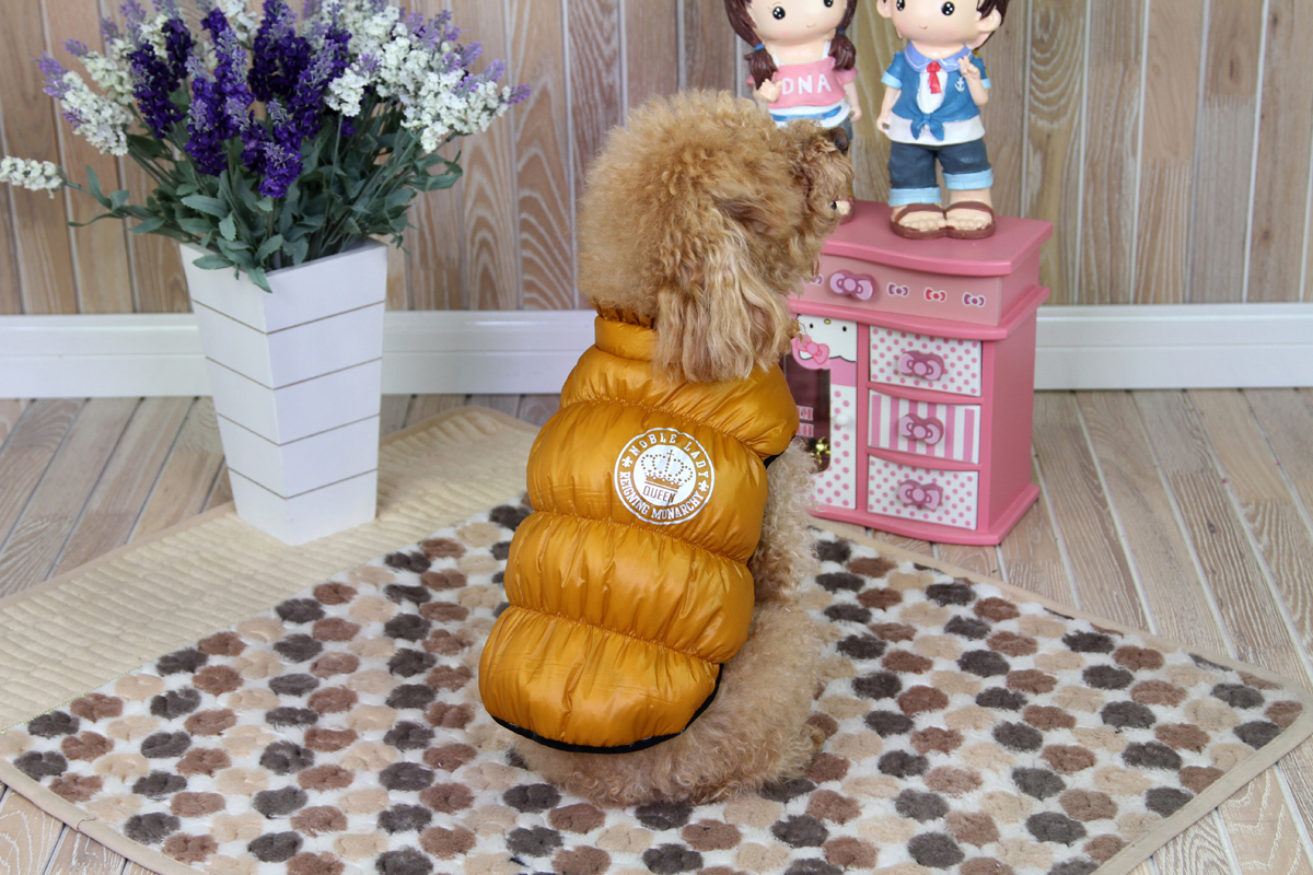 Куртка для собак Dobaz, цвет: золотой. ДА1234АХЛ. Размер XL куртка для собак dobaz love r