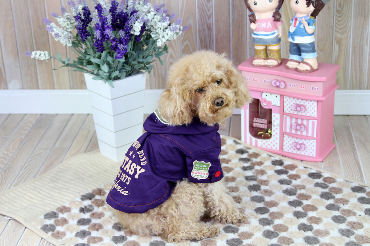 """Куртка для собак """"Dobaz"""", цвет: фиолетовый. ДА1244СХЛ. Размер XL"""