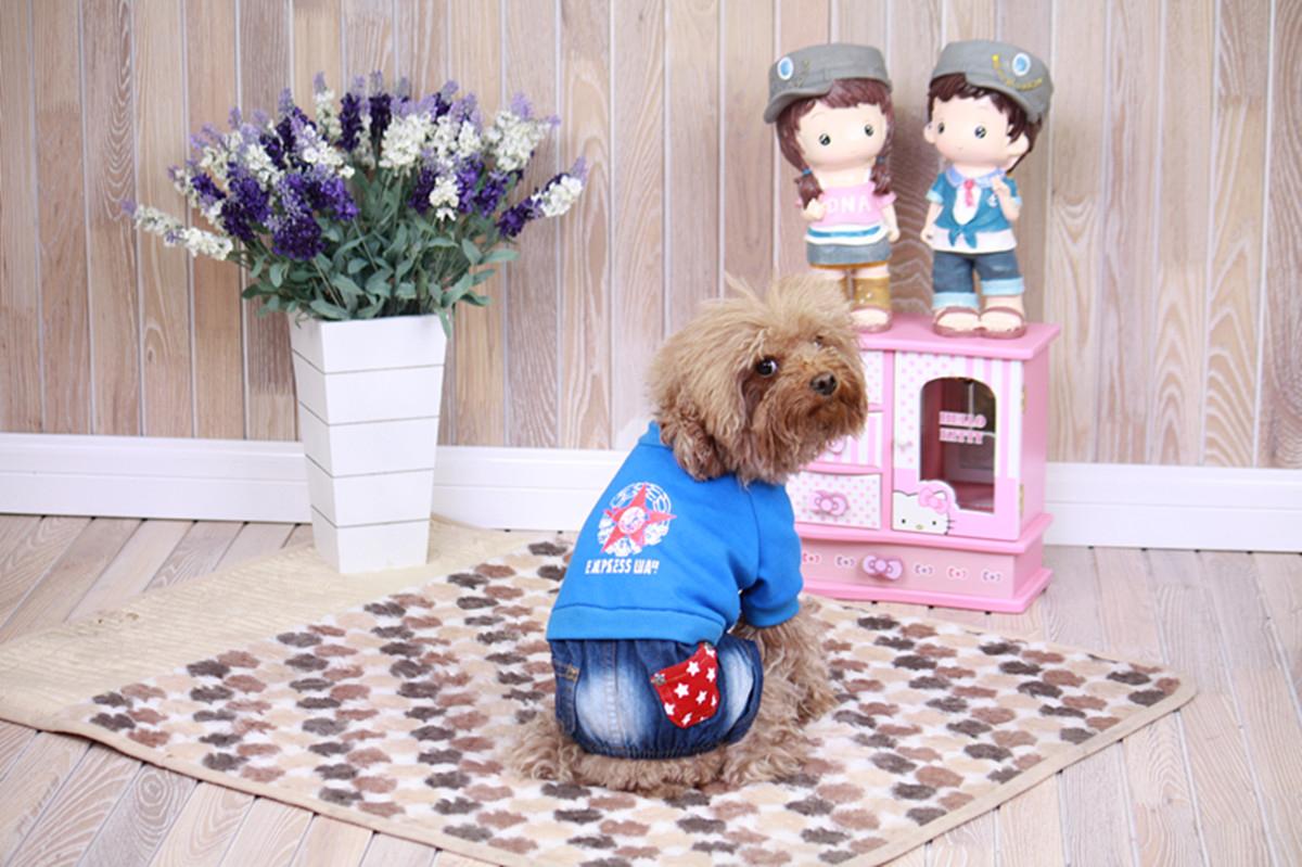"""Комбинезон для собак Dobaz """"Звезда"""", цвет: джинсовый, синий. ДЛ1212С2ХЛ. Размер 2XL"""