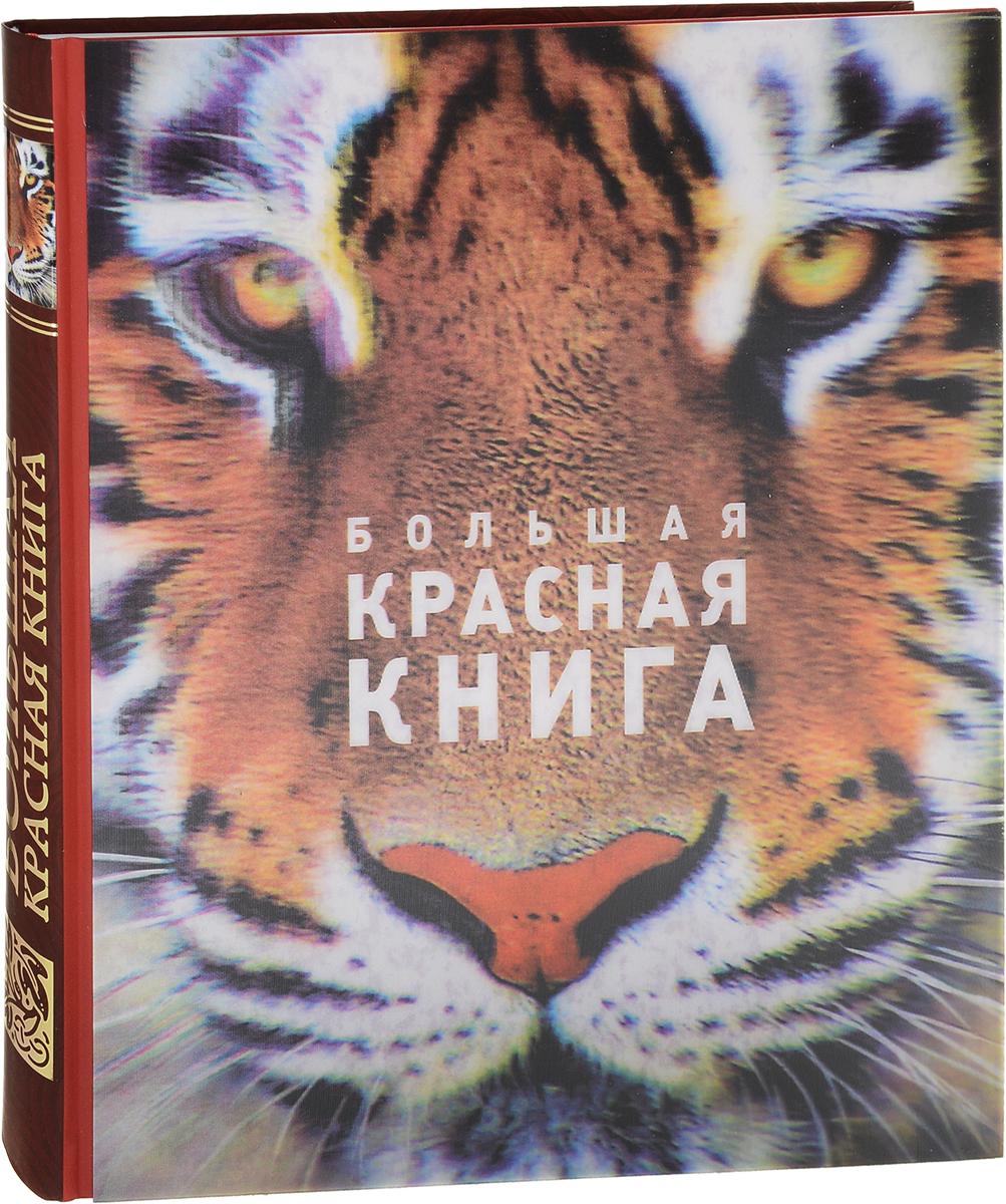 Оксана Скалдина, Евгений Слиж Большая красная книга (стерео-варио)