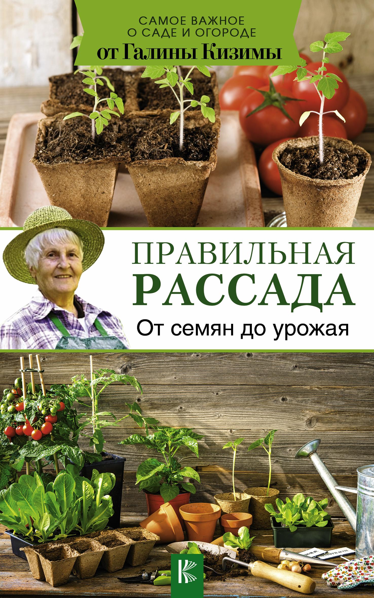 Галина Кизима Правильная рассада. От семян до урожая