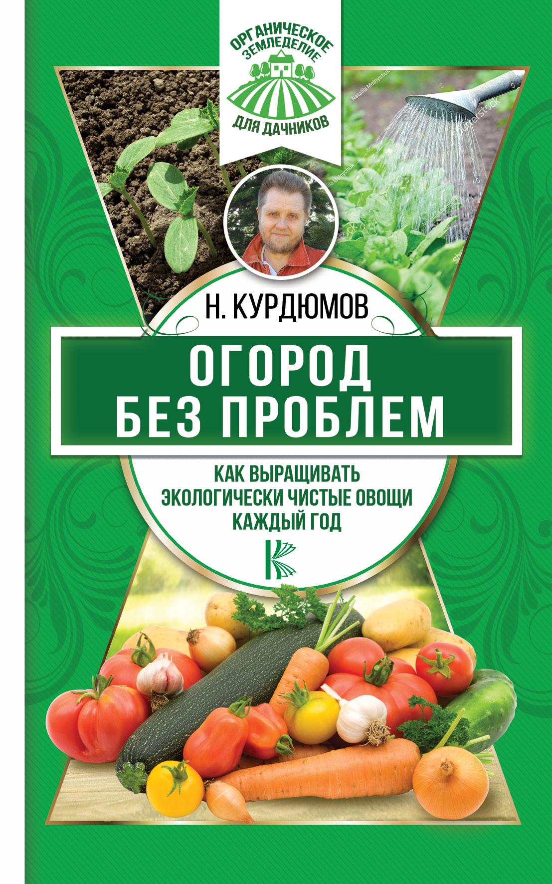 Н. И. Курдюмов Огород без проблем. Как выращивать экологически чистые овощи каждый год курдюмов н как сделать огород любимым