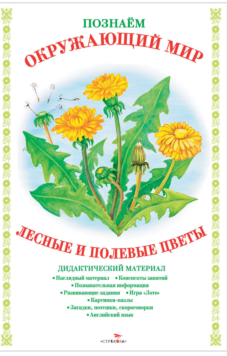 Познаем окружающий мир. Лесные и полевые цветы. Дидактический материал федотова александра михайловна познаем окружающий мир играя сюжетно дидактические игры для дошкольников
