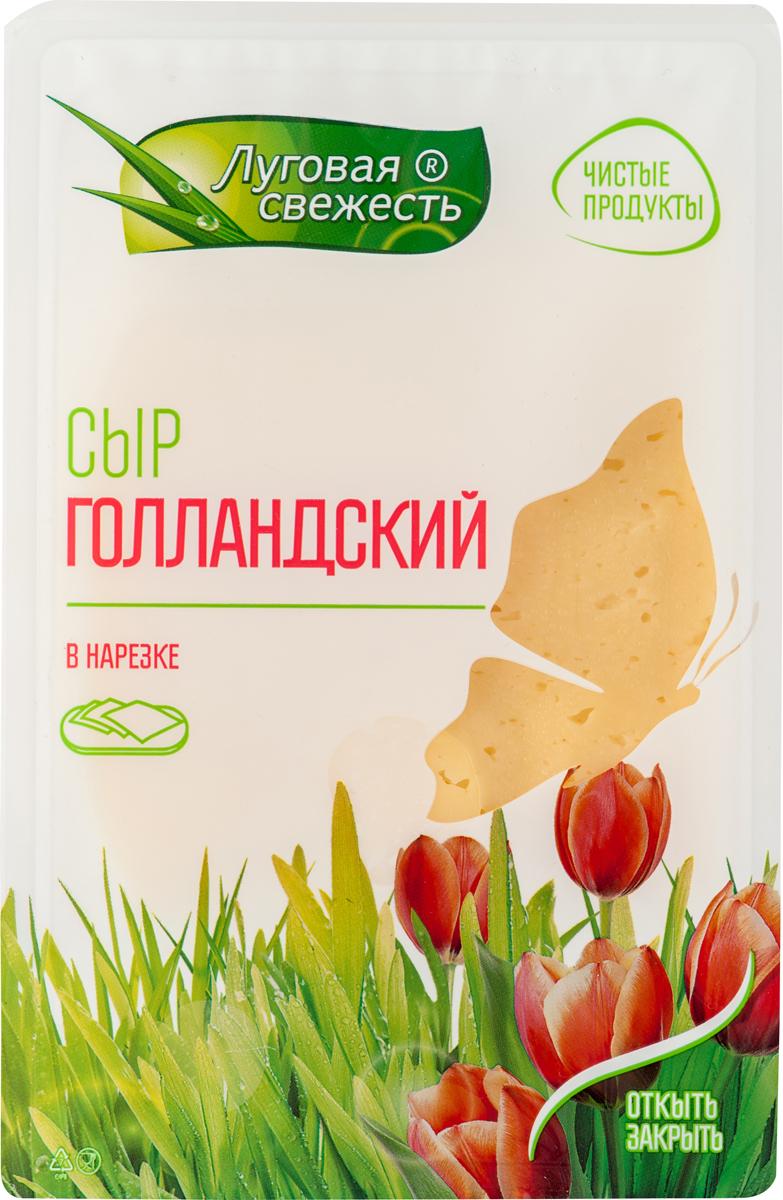 Луговая Свежесть Сыр Голландский, 45%, нарезка, 380 г все мыши любят сыр