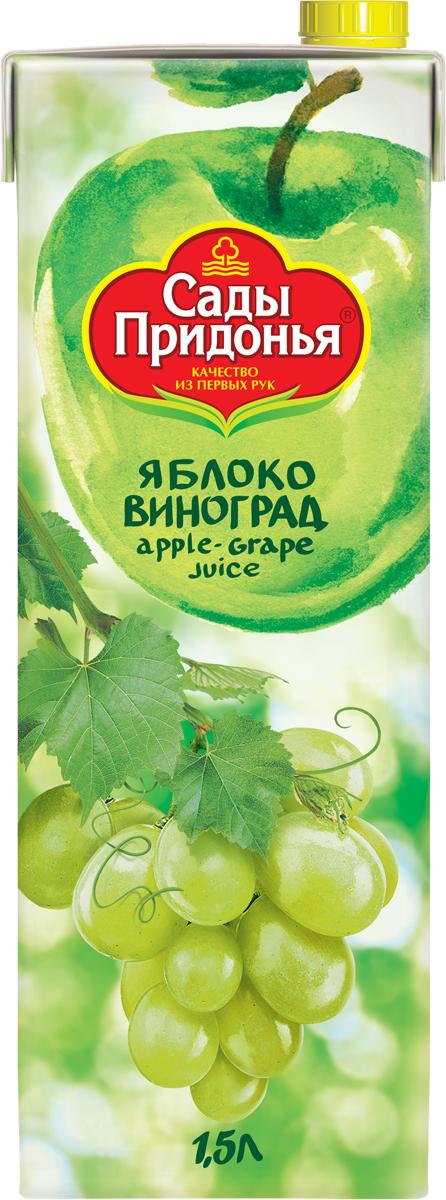 Сады Придонья Сок яблочно-виноградный осветленный восстановленный, 1,5 л сок яблочно виноградный осветленный восстановленный с 6 месяцев сады придонья 18 шт по 0 125 л