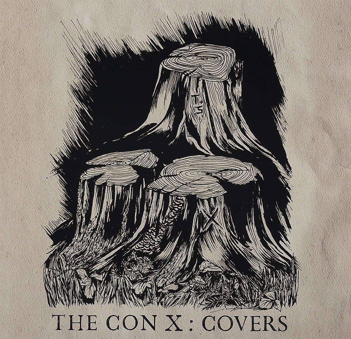 Tegan,Sara Tegan And Sara. The Con X: Covers (LP) цена и фото