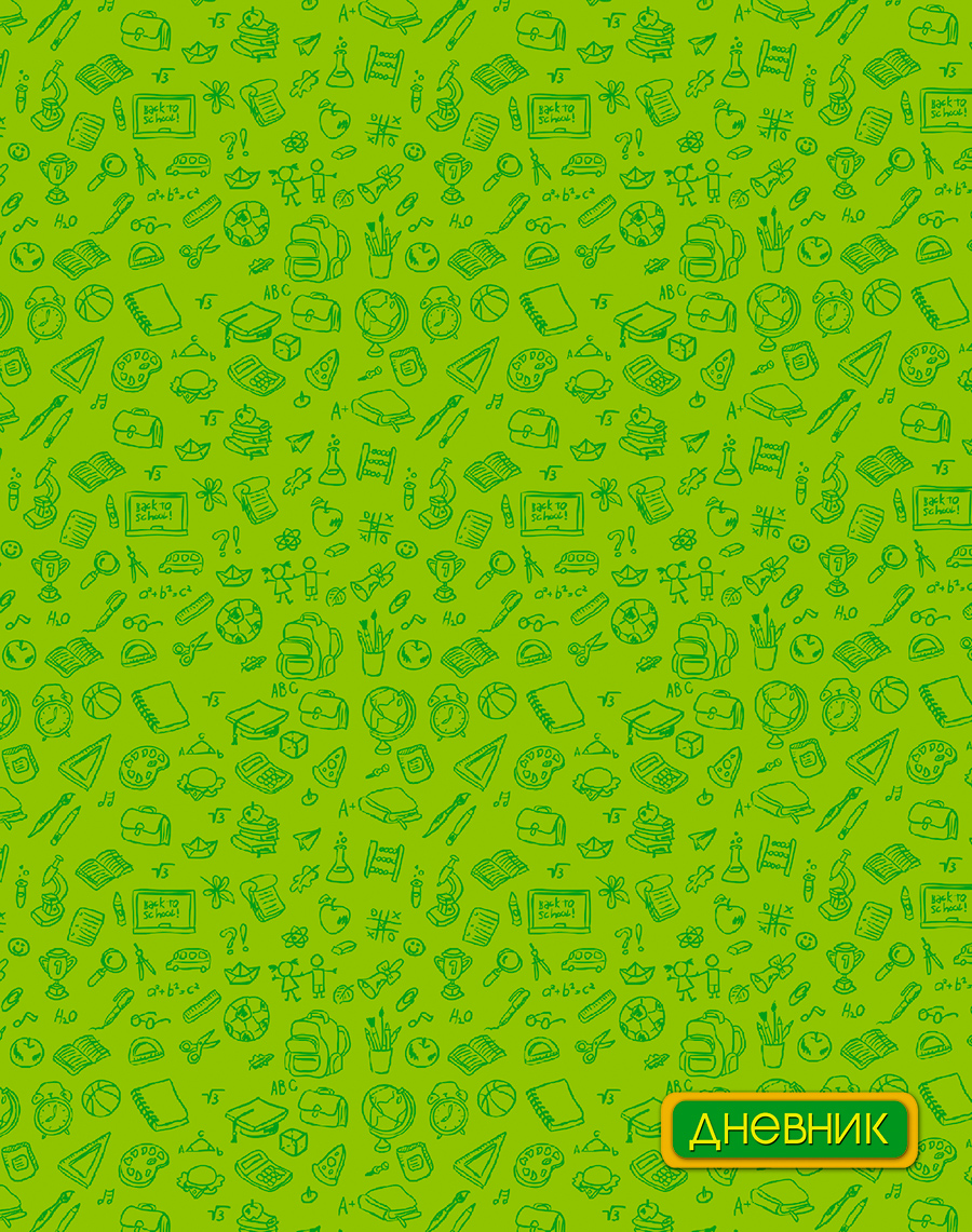 Апплика Дневник школьный для младших классов Паттерн цвет зеленый С3620-05 апплика дневник школьный графит