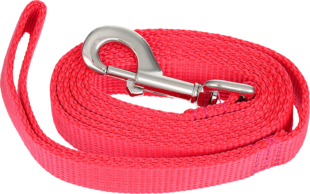 Поводок капроновый для собак Аркон, цвет: красный, ширина 2,5 см, длина 1,5 м поводок капроновый для собак аркон цвет розовый ширина 2 см длина 5 м