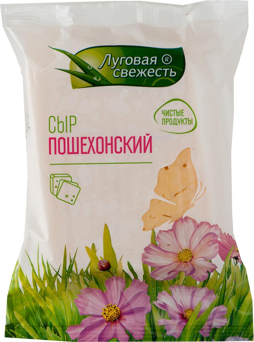 Луговая Свежесть Сыр Пошехонский, 45%, 225 г сыр horeca select рикотта 45%