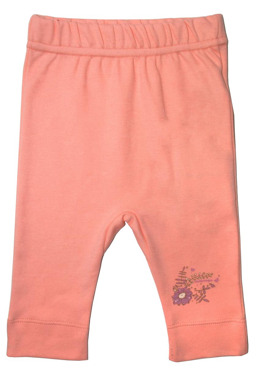 Штанишки Мамуляндия брюки джинсы и штанишки artie штанишки для девочки лисы