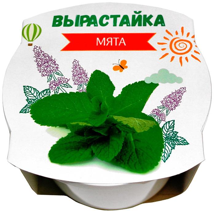 Ракета Набор для выращивания растений Мята набор для выращивания rostokvisa мята