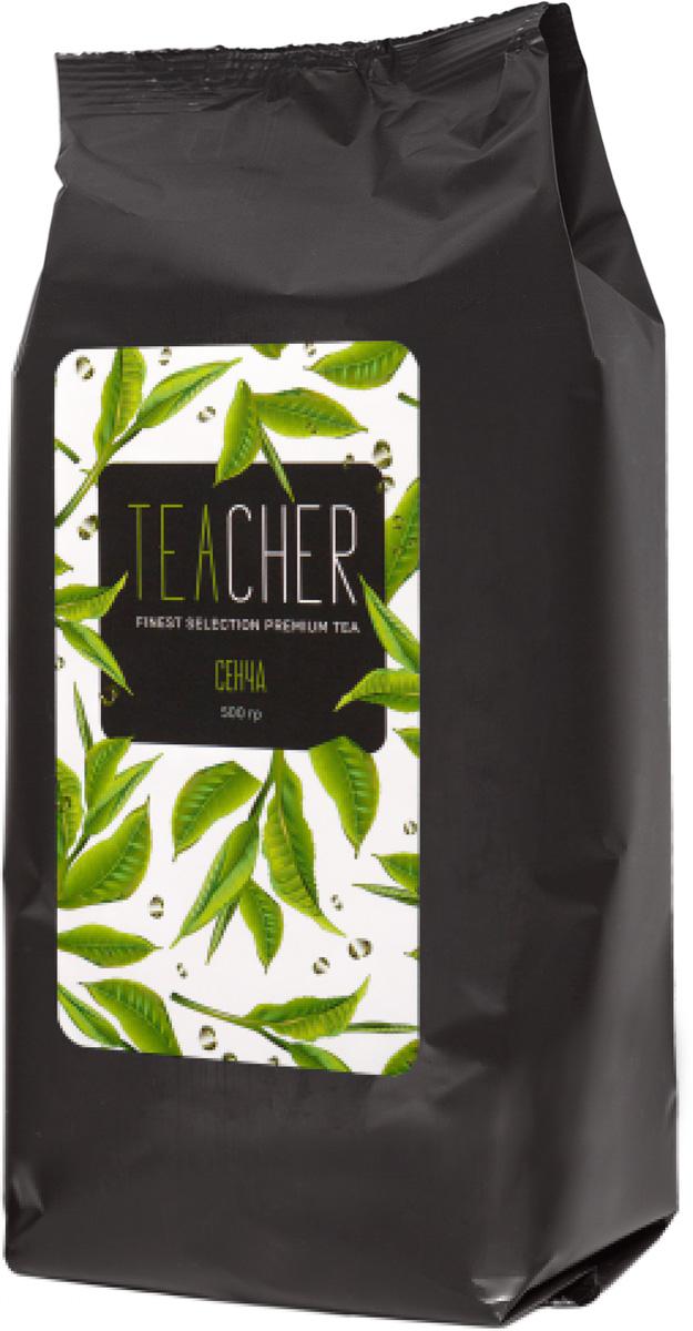 Teacher Сенча листовой чай премиум, 500 г teacher малиновый рассвет чай листовой 500 г