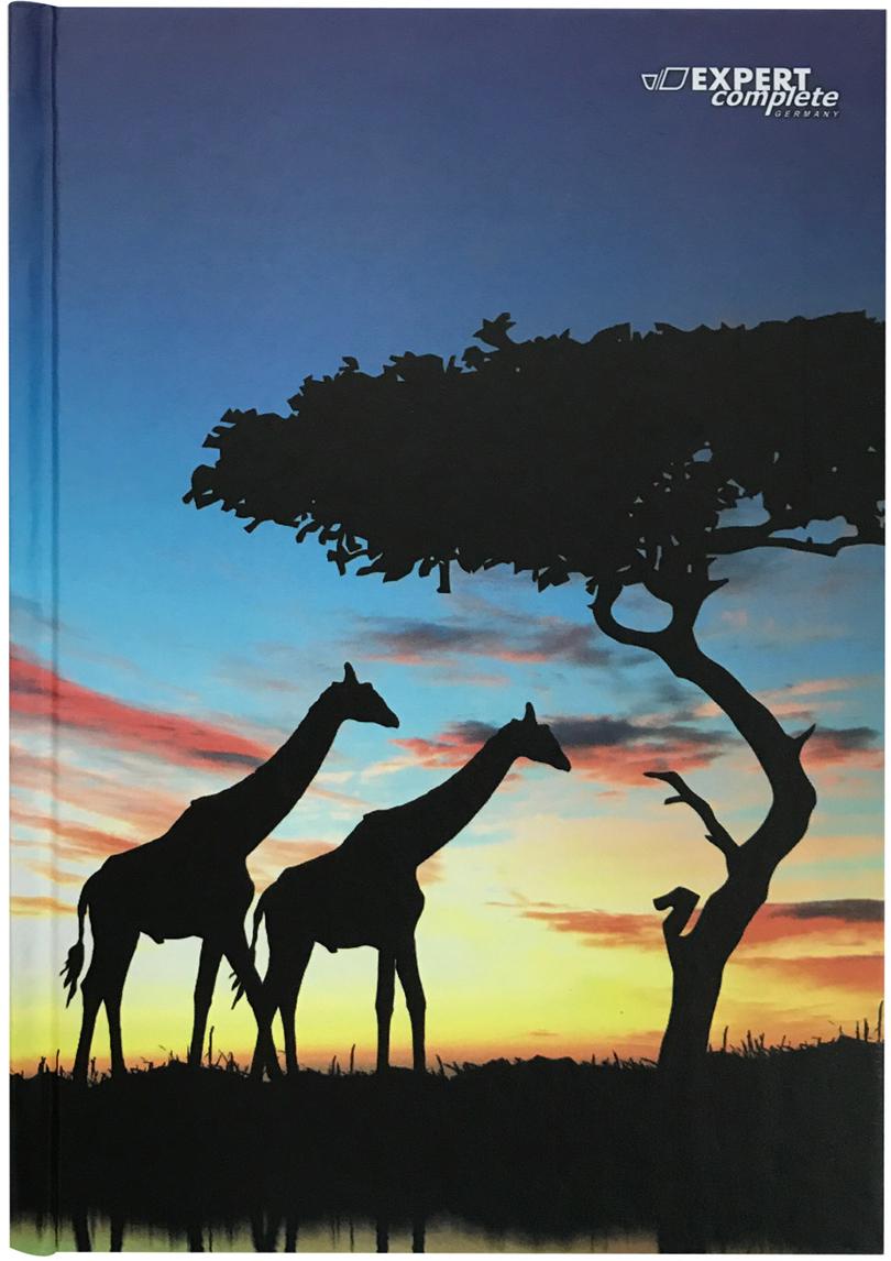 Expert Complete Ежедневник Africa недатированный 288 листов цвет голубой синий формат A5 maestro de tiempo ежедневник estilo недатированный 288 листов цвет голубой формат a5