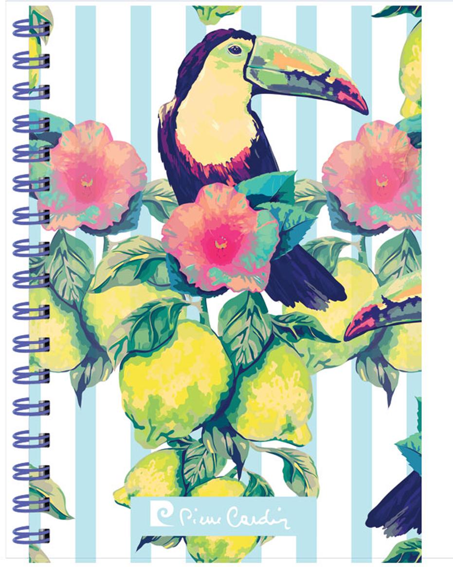 Pierre Cardin Тетрадь Tropic Exotic 80 листов в клетку цвет разноцветный формат A5 pierre cardin папка каталог riviera paradis 20 листов