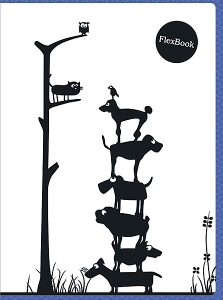 Expert Complete Тетрадь Animals 80 листов в клетку цвет белый черный синий формат A4 expert complete тетрадь neon book 120 листов в клетку цвет синий формат a5