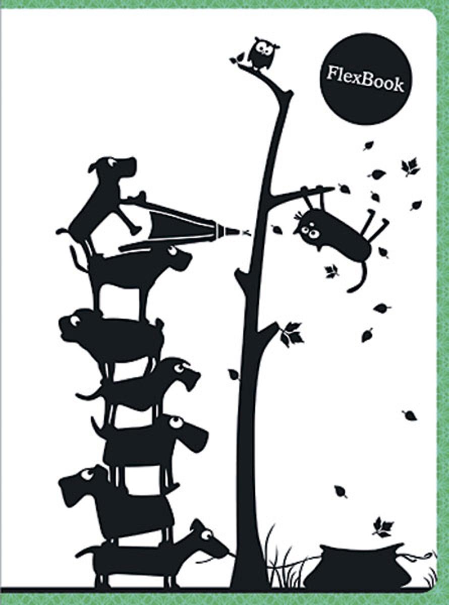 Expert Complete Тетрадь Animals 80 листов в клетку цвет белый черный зеленый формат A5 expert complete тетрадь neon book 120 листов в клетку цвет синий формат a5