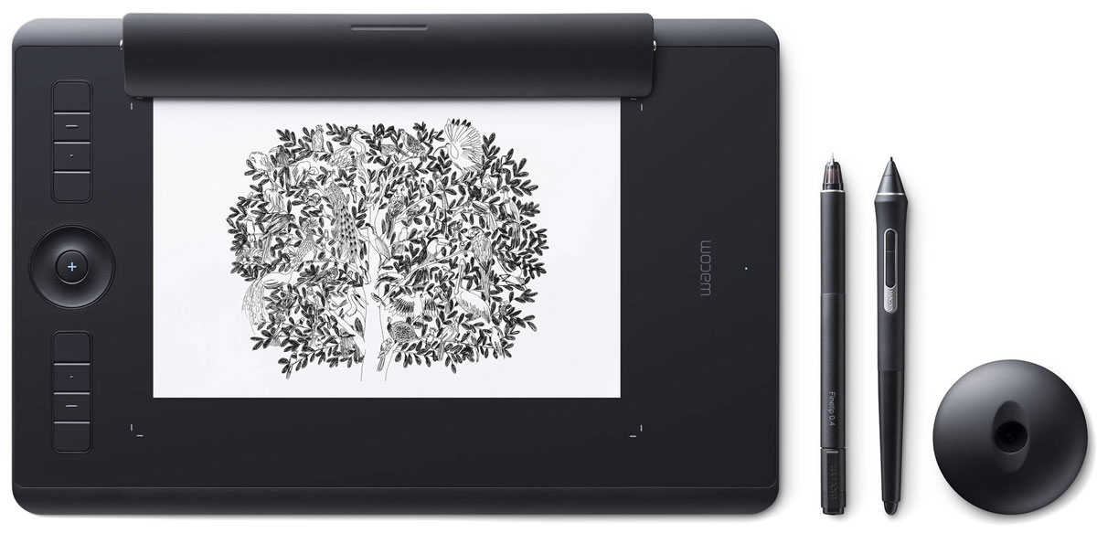 Wacom Intuos Pro Medium Paper (PTH-660P-R) + OEM Corel Painter2018, Black графический планшет с программным обеспечением Painter 2018