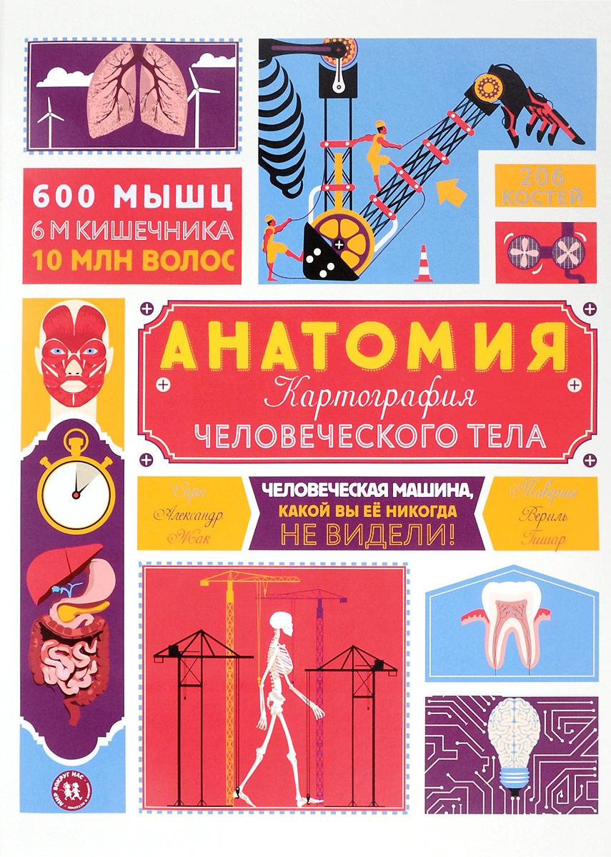 Жак Гишар Анатомия. Картография человеческого тела
