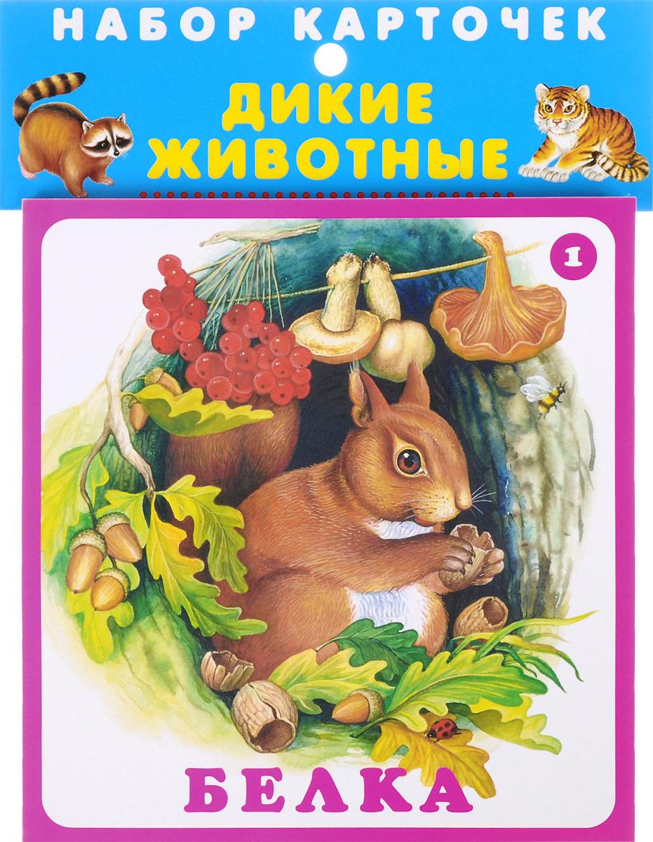 Дикие животные (набор карточек)