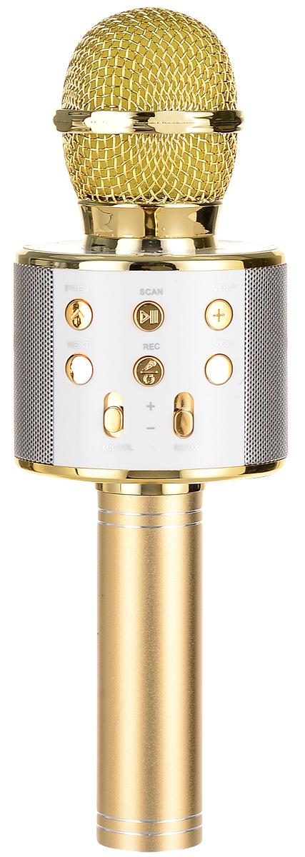 лучшая цена Караоке микрофон Karaoke Boom KB-WS858RU, BP-00001203, Gold