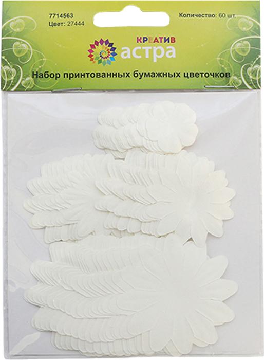 Набор декоративных принтованных цветочков Астра, цвет: белый, 60 шт набор декоративных цветов scrapberry s цвет белый 10 шт