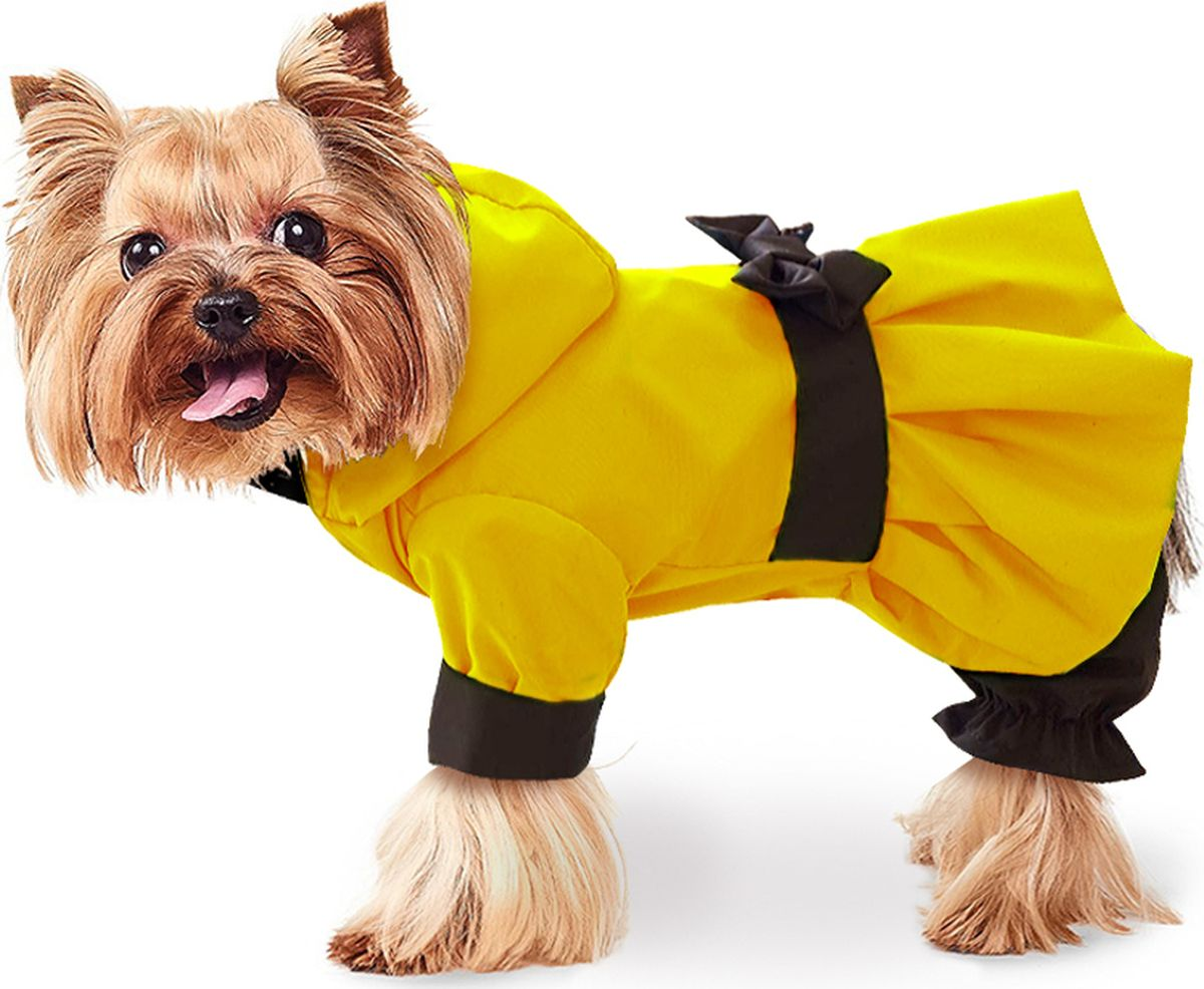 одежда для собак маленьких пород картинки факс вывалила