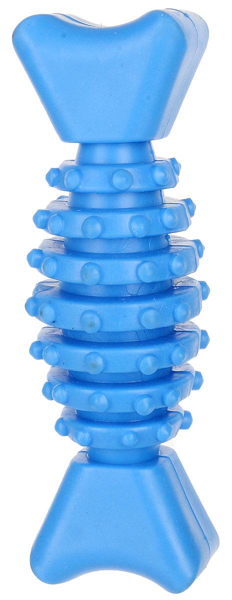 Игрушка для собак Уют Гантель-косточка с шипами, цвет: голубой, 12 см игрушка для собак уют звездочка с шипами цвет салатовый 7 см