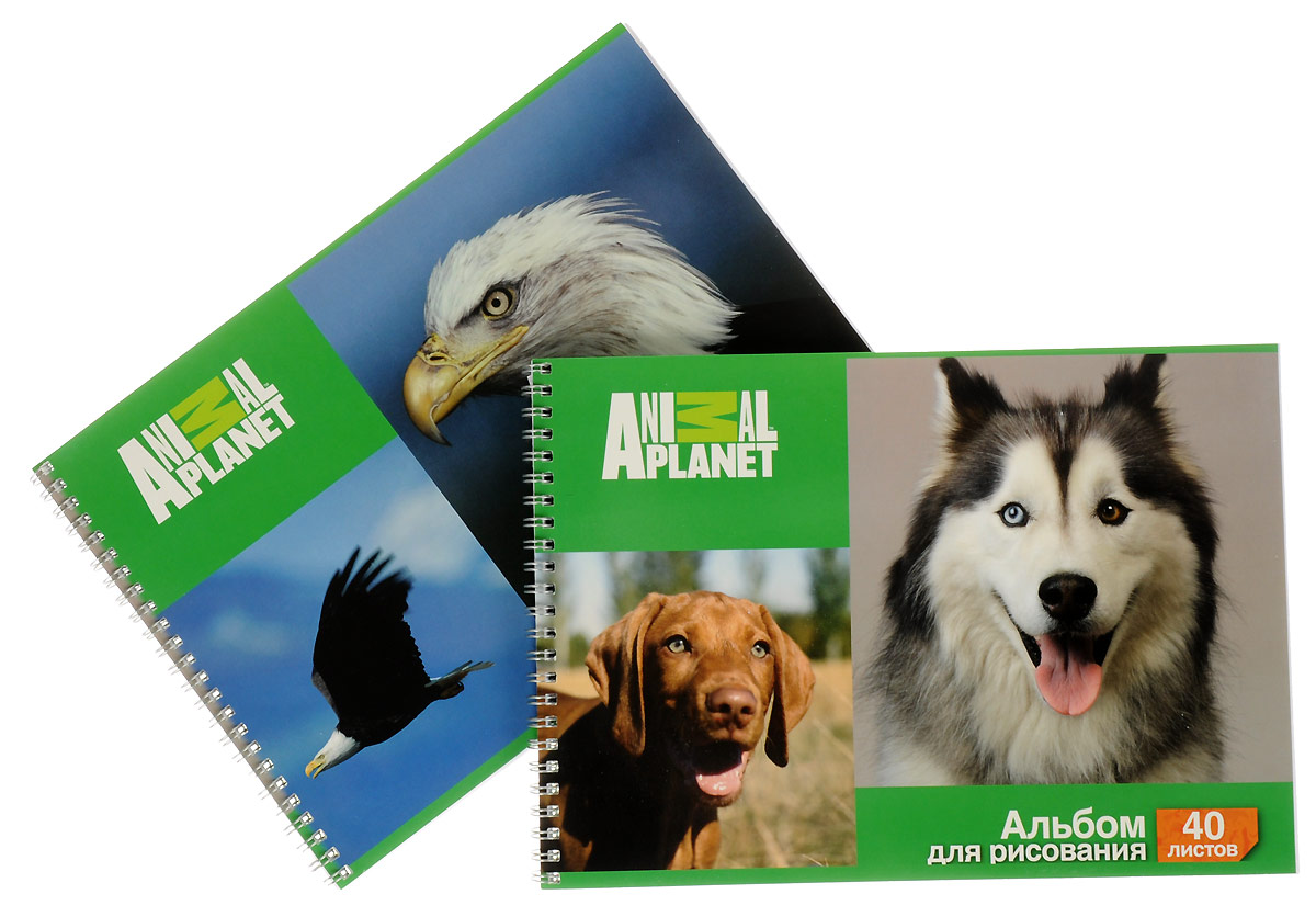 Action! Набор альбомов для рисования Орел и собаки 40 листов 2 шт альбом для рисования action animal planet a4 40 листов ap aa 40 в ассортименте