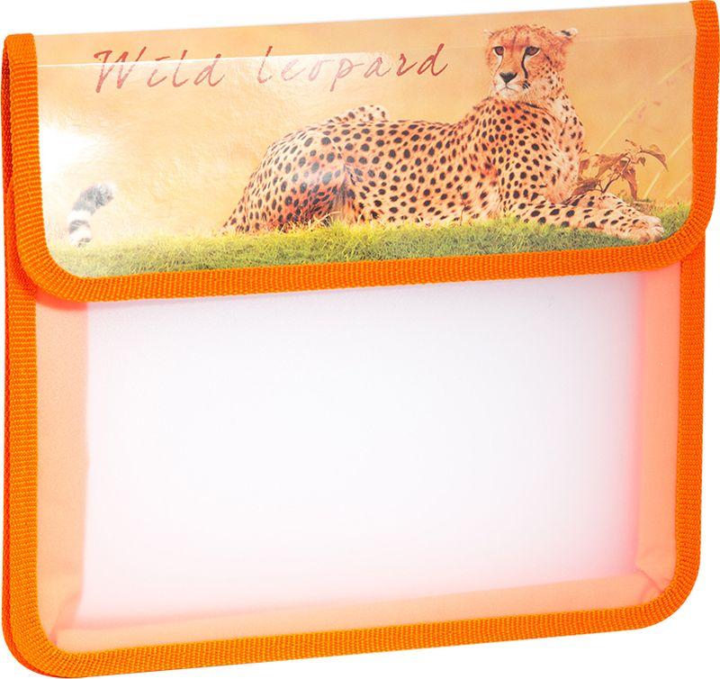 ArtSpace Папка для тетрадей Дикие кошки А5 2 отделения на липучке цвет оранжевый