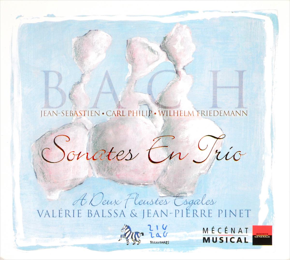 Bach Family. Sonates En Trio various boccherini luigi sonates